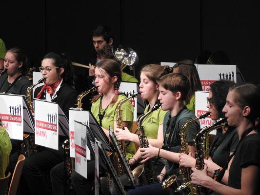Das Saxophon-Orchester