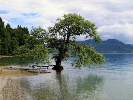 Lac Tazawako Akita Tohoku