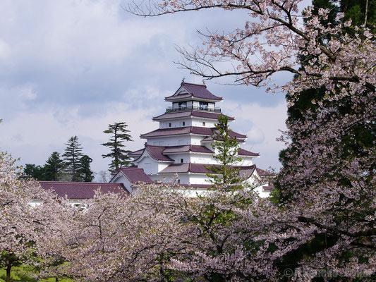 Le Château d'Aizu Wakamatsu