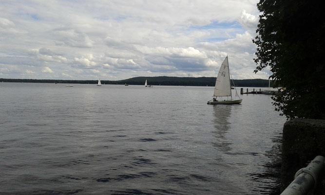 Segelschiff am Müggelsee