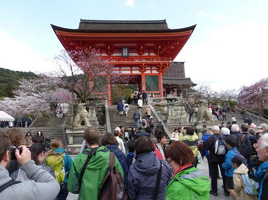 Kiyomizu-Tempel