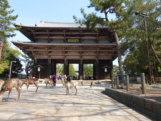 Todaiji-Tempel