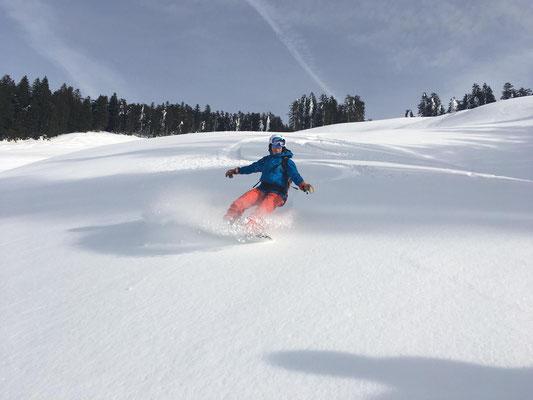 Freeride Ski