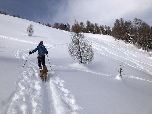 Skitouren Guiding Obertauern