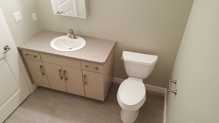 Basement bathroom renovation vanity toilet