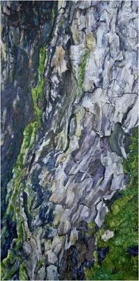 Lebenskraft - Bergahorn  - Acryl auf Leinwand 30x60 cm  -  CHF 1500
