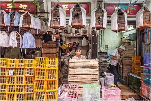 Kowloon (九龍). Marché aux oiseaux.