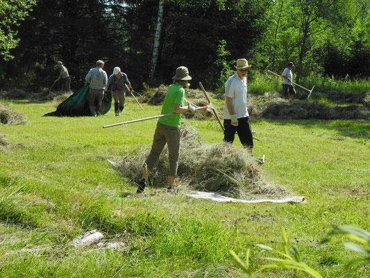 Landschaftspflege im Pioniergelände Krailling (Foto: LBV Starnberg)