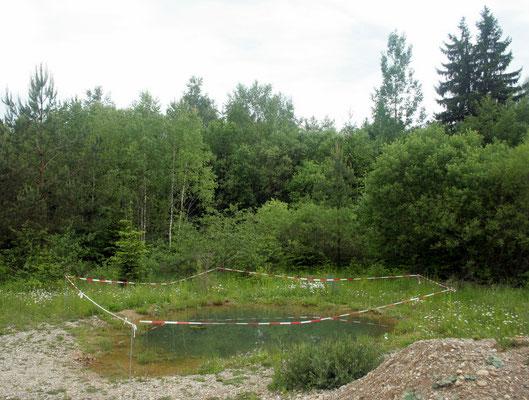 künstlich angelegtes Laichgewässer