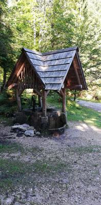 Nach der Überquerung des Pišnica Fluss ging es bergauf in den Wald