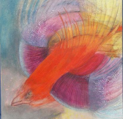 Mutierte Friedenstaube,Acryl auf Lwd. 60x60,2001