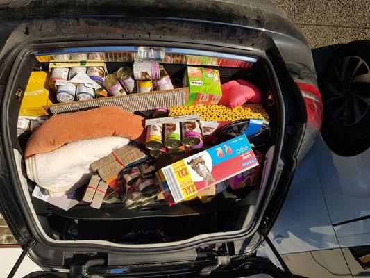 zweiter Kofferraum gut gefühlt :-)