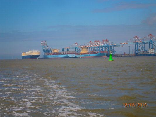 vorbei am Containerhafen von Bremerhaven