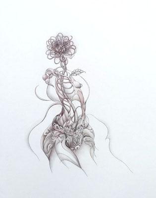 """""""花籠""""<br>鉛筆、水彩/34.5×26.5 cm"""