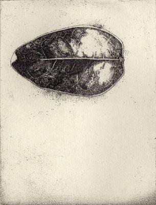 """Leaves #01""<br>エッチング、雁皮刷り<br>15.5×11.5cm/ED.15"