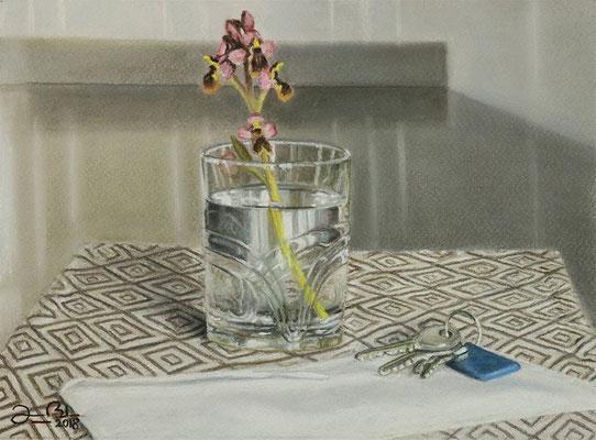 VASO CON ORQUIDEAS - Pastel sobre papel Canson (28,5 x 18,5) - 2018 (En venta)