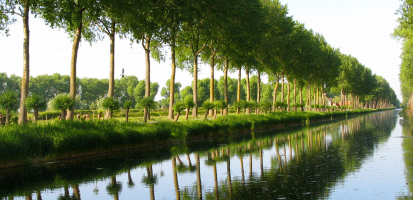 PASEO DEL CANAL (DAMME -BELGICA)