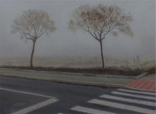 NIEBLA - Pastel sobre papel Canson  (40 x 29) - 2017