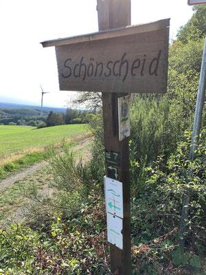Schönscheid