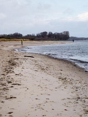 Strand bei Maasholm