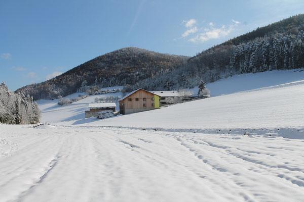 Der Schrammelhof - auch im Winter wunderschön.