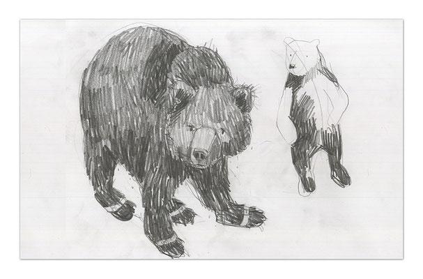 bears I
