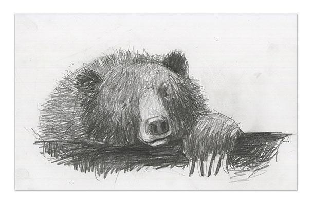 bears IV