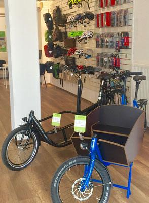 Lasten e-Bikes und e-Cargobikes kaufen, Probefahren und persönliche Beratung in Braunschweig