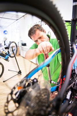 Lastenfahrräder, e-Cargobikes und Lasten e-Bikes kaufen, Probefahren und Services im Lastenfahrrad-Zentrum Bielefeld
