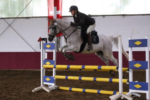 """Shagya-Araber beim Turnier """"Arabische Pferde in Westfalen"""" 2018"""