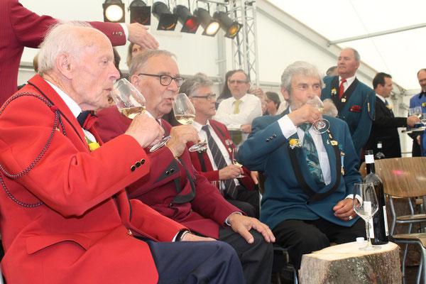 Drei CISM-Veteranen: Arnold Hauri (MG Seengen), Ulrich Schärer (MG Möriken-Wildegg), Sepp Ottiger (MGK); Musiktag Hausen 22. Mai 2016