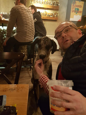 Dogge Budimir - 11 Monate, 62 kg, Leckerchen geht immer...