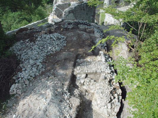 Nach dem Roden des Buschwerks und Abheben der dünnen Bodenschicht lassen sich erste Strukturen am Burghügel erkennen.