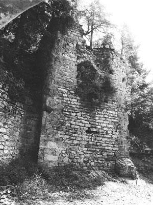 Torturm um 1975. Die seitlichen Mauern sind teils verstürzt und überwuchert.