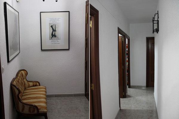 Entrada y pasillo de acceso al resto de las instalaciones.
