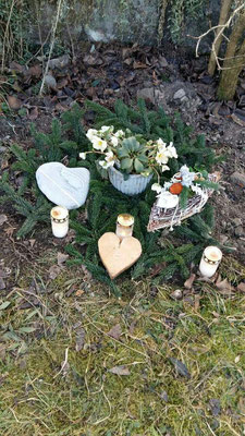Kater Shlomo wurde wunderschön beerdigt