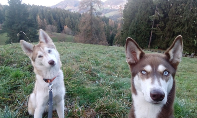 Sonntags Spaziergang mit Sara & Lucy