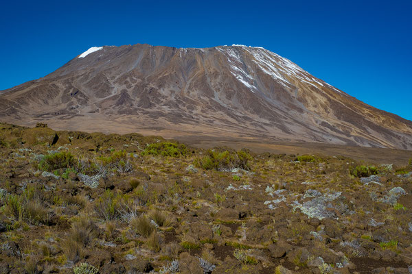 Kilimanjaro 20