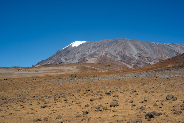 Kilimanjaro 08