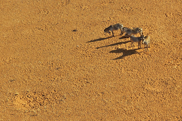 NAMIBIA - LANDSCAPES 50