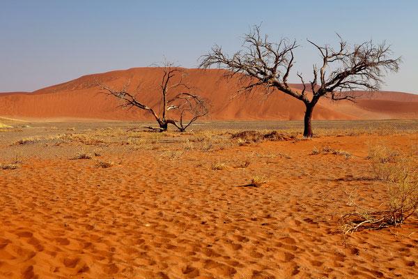 NAMIBIA - LANDSCAPES 09
