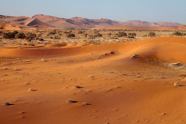 NAMIBIA - LANDSCAPES 12