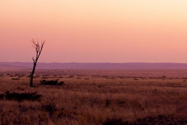 NAMIBIA - LANDSCAPES 45