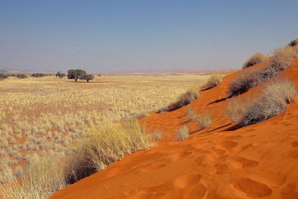 NAMIBIA - LANDSCAPES 07