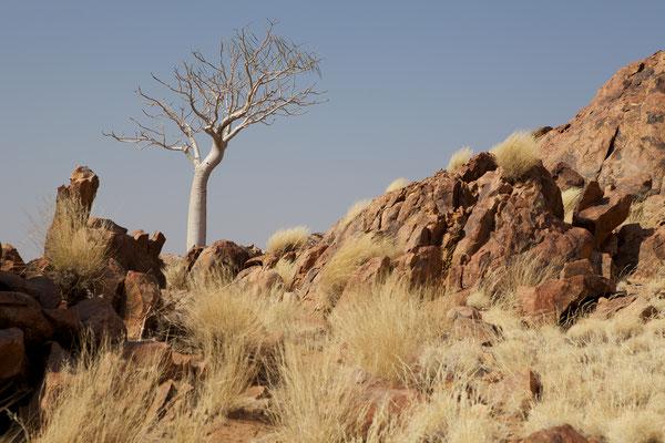 NAMIBIA - LANDSCAPES 06