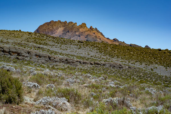 Kilimanjaro 07