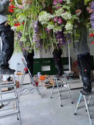 Wienss Innenausbau GmbH - Innenausbau, Objektbau, Museumsbau - hier: Gartenmuseum Lennestadt - zentraler Bereich mit Blumenwiese über Kopf. www.wienss-innenausbau.de - Montage Blumen