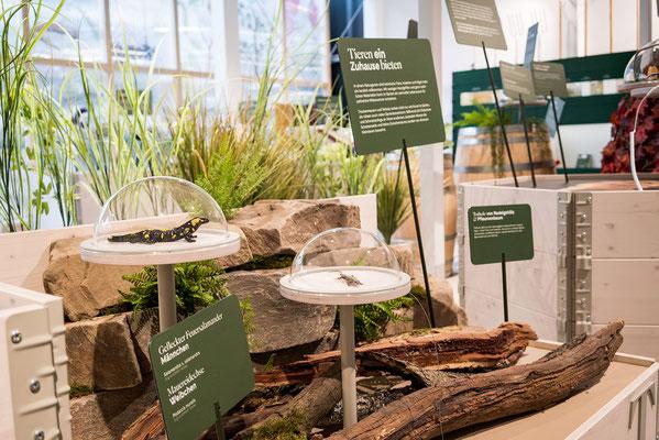Wienss Innenausbau GmbH - Innenausbau, Objektbau, Museumsbau - hier: Gartenmuseum Lennestadt -www.wienss-innenausbau.de - Hochbeete Ansicht - Detail Holz