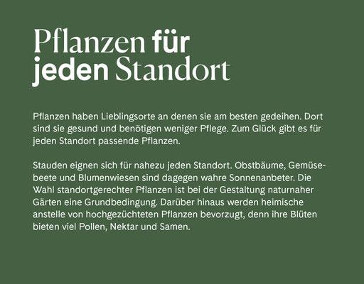 Wienss Innenausbau GmbH - Innenausbau, Objektbau, Museumsbau - hier: Gartenmuseum Lennestadt - www.wienss-innenausbau.de - Gartenalphabet P wie Pflanzen