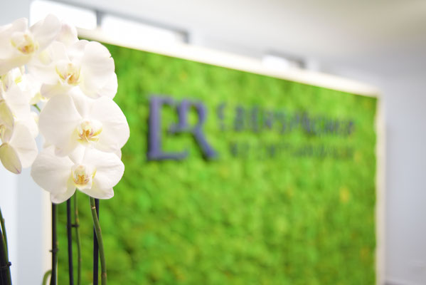 Empfangstheke bei EBERSPÄCHER Rechtsanwälte in Böblingen - geschwungene Theke - Rückwand aus Moos mit Orchidee